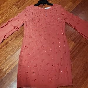 Badgely Mischka Crystal Embellished Dress